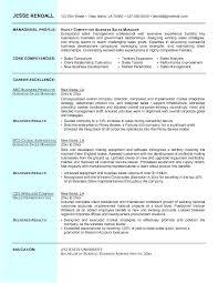 sales experience resume real estate sales resume fancy resume real estate sales manager on