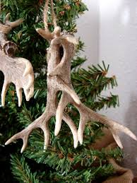 moose r us detailed miniature moose and deer antler ornament