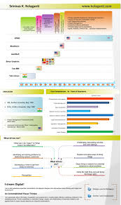 Experienced Graphic Designer Resume 68 Best Visual Cv Images On Pinterest Infographic Resume
