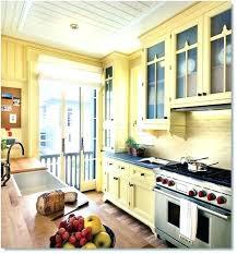 Light Yellow Kitchen Cabinets Light Yellow Kitchen Light Yellow Kitchen Cabinets Yellow Kitchen