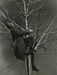 elrectanguloenlamano teruel robert capa photographed a dead
