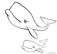 coloring pages whale coloring sheet whale coloring sheets free