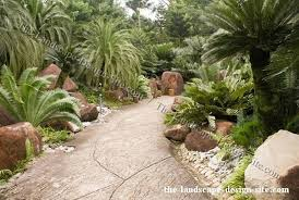 tropical garden path