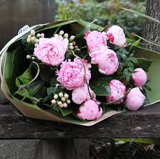 peonies flower delivery peonies flowers delivery sydney thin
