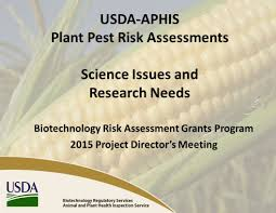 usda native plants usda aphis plant pest risk assessments science issues and research