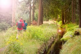 Baden Im Harz Familienurlaub Harz Kinderfreundliche Hotels Bei Tui At