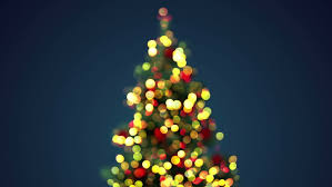 blurred christmas tree seamless loop festive background 4k