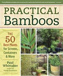 buy ornamental bamboos book at low prices in india