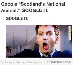 Scottish Meme - a brief history of scotland s national animal horse nation