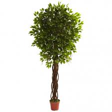7 5 foot outdoor artificial ficus tree limited uv 5379
