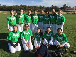 Softball Halloween Costumes 14u 16u Ryan Tsunami Softball