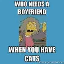 Crazy Cat Lady Memes - crazy cat lady memes image memes at relatably com