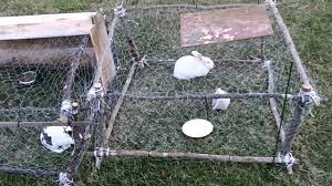 How To Build A Rabbit Hutch And Run Rabbit Hutch Under 5 Youtube