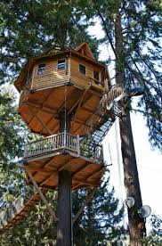 the 12 most amazing treehouses ever