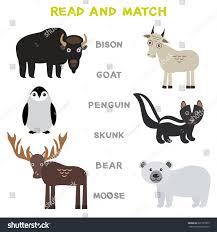 kids words learning game worksheet read stock vector 621597875