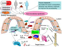 ijms free full text a possible role of intestinal microbiota