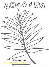 palm branches for palm sunday palm sunday coloring page with wave palm branches when