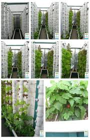 18 best commercial hydroponic aquaponic farms images on pinterest