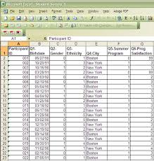 Excel Survey Data Analysis Template Enter Organize Clean Data Pell Institute