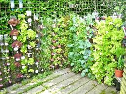 Recycling Garden Ideas Plastic Container Gardening Ideas Recycled Container Gardening