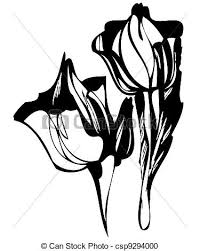 vector clipart of a tulip a sketch in black and white tulip
