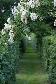How To Design A Flower Bed Flower Garden Ideas