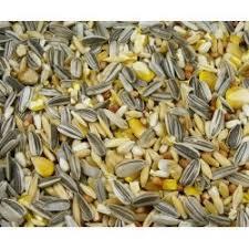 grey stripe sunflower bird seed in 3 kg 10 kg u0026 25 kg