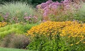 Home Decorating Tips For Beginners Flower Garden Ideas For Beginners Home Decorating Ideas And Tips