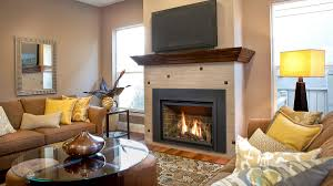 gas fireplace charlotte nc the hearth doctor inc