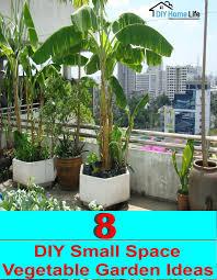 vegetable garden ideas small spaces home design ideas