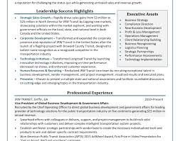 cv business development manager resume of business development executive business development