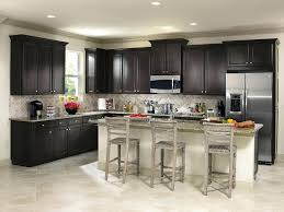 buy direct kitchen cabinets direct buy kitchen cabinets kitchen company best cheap cabinets euro