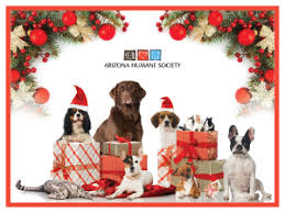memorial and tribute gifts from the arizona humane society