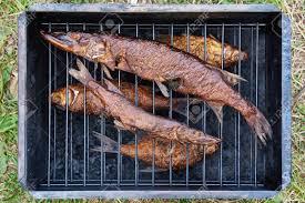 cuisiner le gardon brochet de poisson fumé et le gardon dans smokehouse banque d images