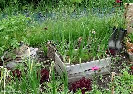self sustaining garden home garden