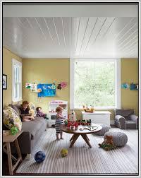 Dash Albert Indoor Outdoor Rugs Best Dash And Albert Indoor Outdoor Rug Ideas Interior Design