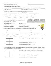 genetics worksheet answers worksheets