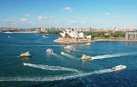 sydney harbor cruises sydney harbour cruise