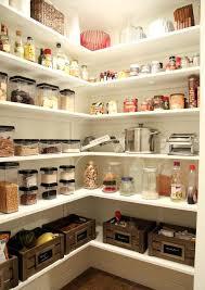 Pantry Shelving Ideas Amusing Walk In Pantry Shelving In Home Design