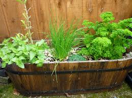 6 small space gardening ideas