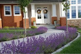 Front Porch Planter Ideas by A Colorful Front Walk Ag Trac Enterprises
