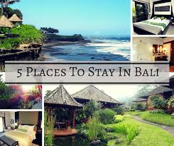 5 places to stay in bali buddy the traveling monkey