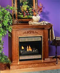 Desa Ventless Fireplace - compact fireplace free gas natural rfn28tb vent u2013 fireplaces