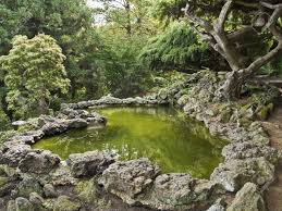 a japanese style landscaped ornamental garden with pond and
