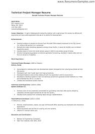Sample Career Objectives For Resumes by Project Management Objective Resume 6458