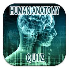 Human Anatomy Quizes Human Anatomy Quiz Android Apps On Google Play