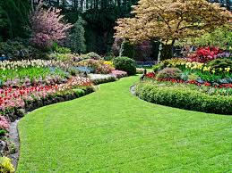 All About Landscaping by We Have Bases In Asheville Nc And Decatur Ga We Work On