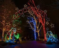 Photos 500 000 Colorful Led Lights Dazzle Zoo Zoos