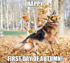 Autumn Meme - happy first day of autumn imgflip