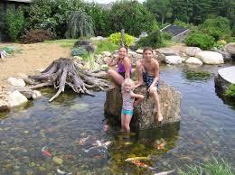 fish u0026 koi pond project photos u0026 ideas nh chester rockingham